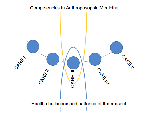 Competencies in Antroposophic Medicine